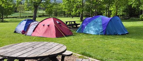 Our large on-site camping area is in an informal, <br />pleasant location near to the Bunkhouses.
