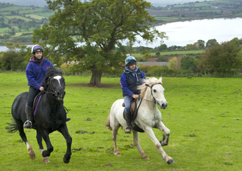 Experienced rider? Join us for a lovely half day or full day Hack in the foothills of the Brecon Beacons across miles of off-road riding routes with stunning views.