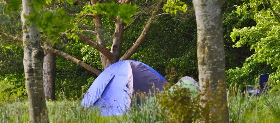 camping-header-3
