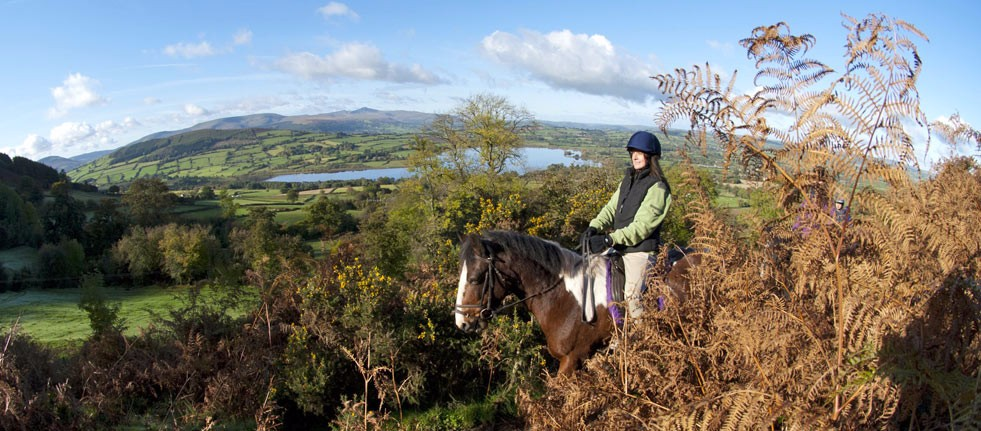 horse-riding-header-1