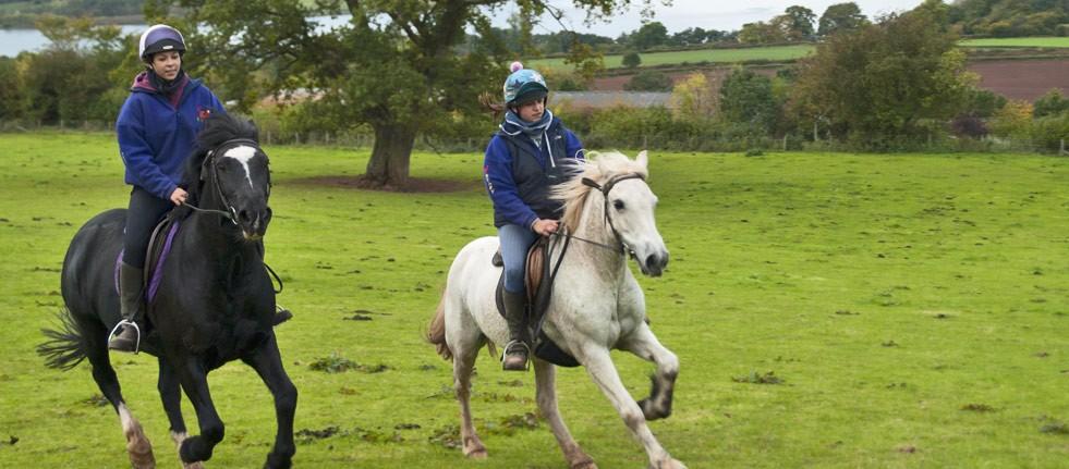 horse-riding-header-2