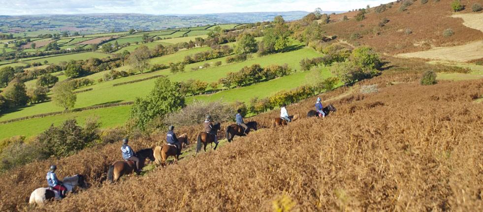 horse-riding-header-4