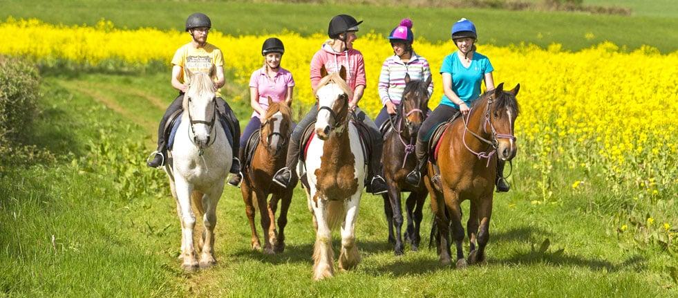 horse-riding-header-6